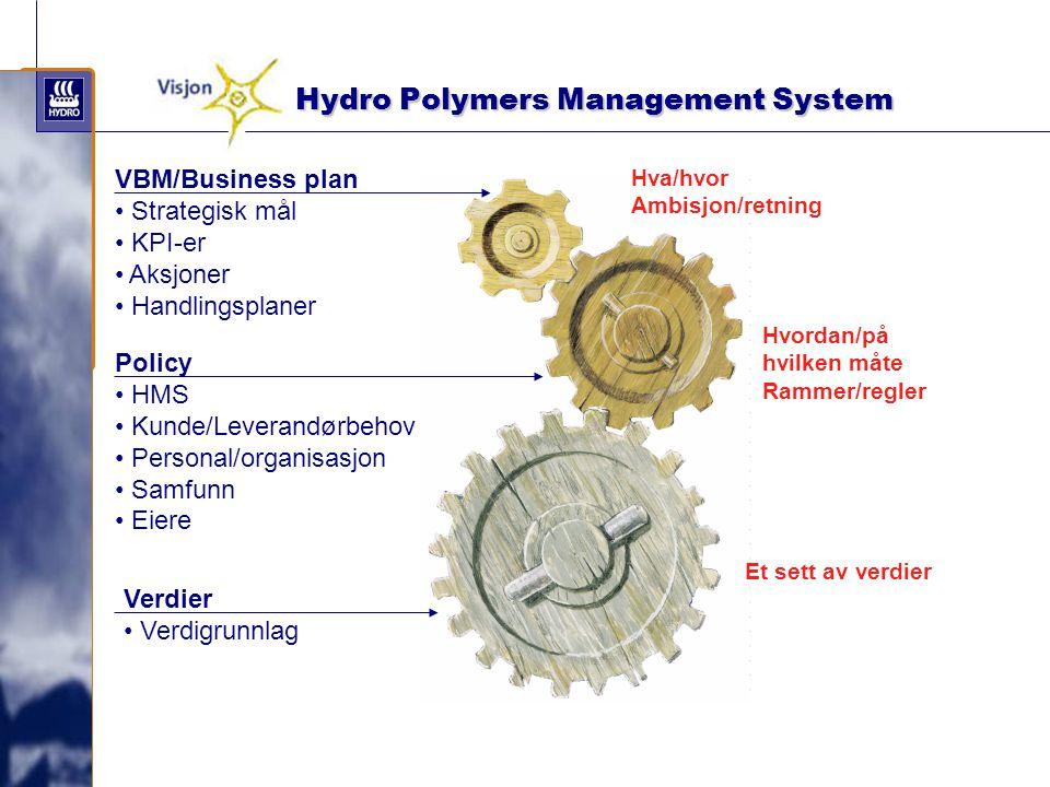 Hydro Polymers Management System Hydro Polymers Management System Hva/hvor Ambisjon/retning Hvordan/på hvilken måte Rammer/regler Et sett av verdier V