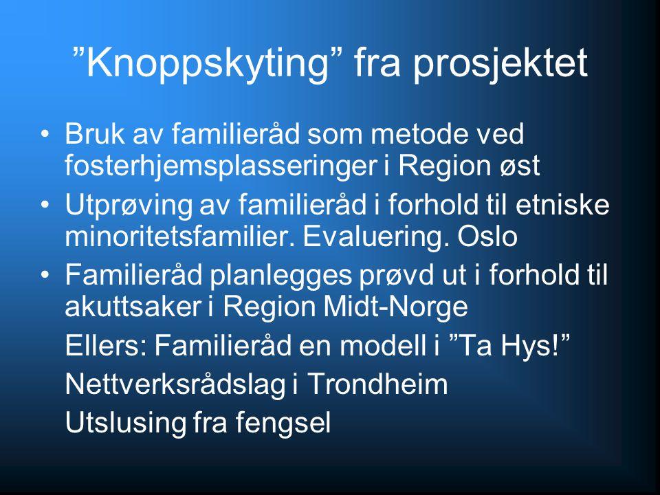 """""""Knoppskyting"""" fra prosjektet Bruk av familieråd som metode ved fosterhjemsplasseringer i Region øst Utprøving av familieråd i forhold til etniske min"""