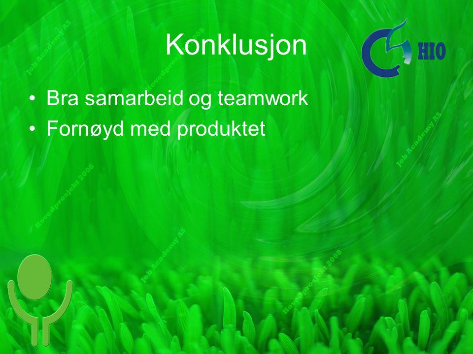 Konklusjon Bra samarbeid og teamwork Fornøyd med produktet