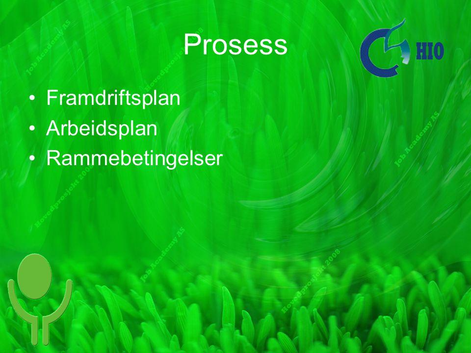 Prosess Framdriftsplan Arbeidsplan Rammebetingelser