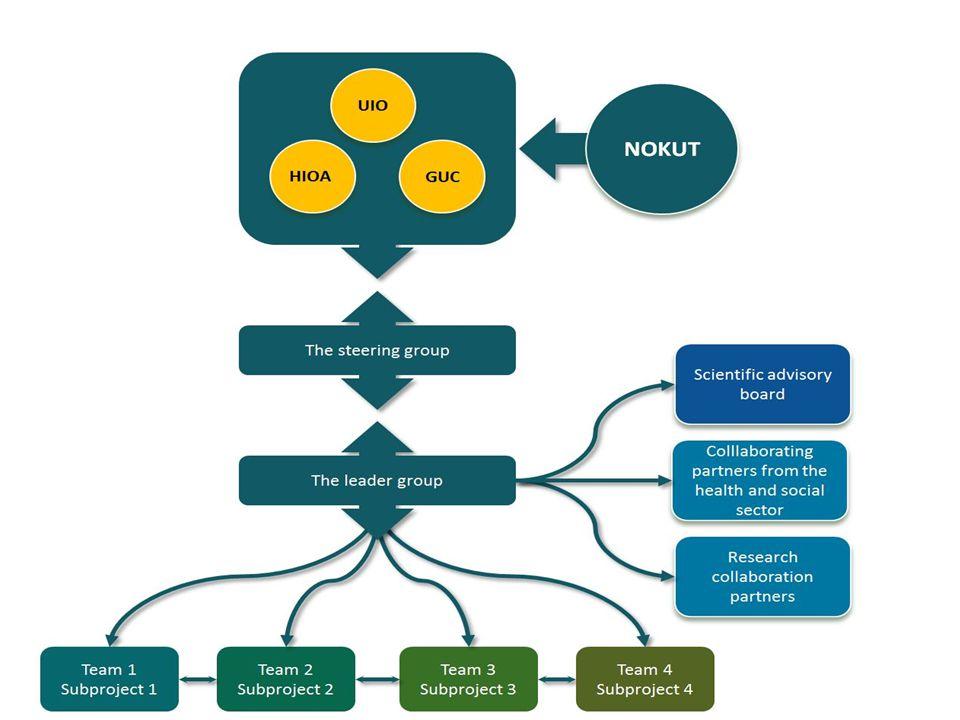 Organisasjonsmodell  Prosjektet legges i senteret, utenfor institusjonene.