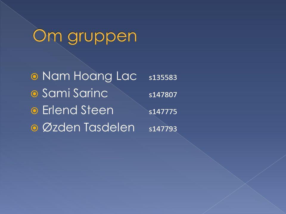  Nam Hoang Lac s135583  Sami Sarinc s147807  Erlend Steen s147775  Øzden Tasdelen s147793