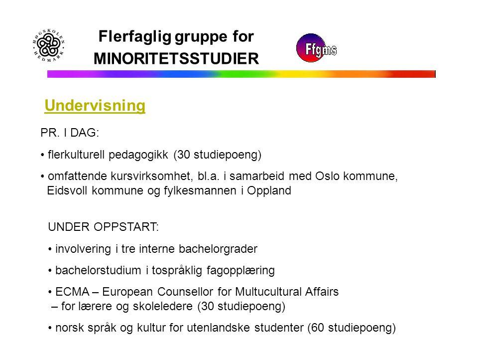 Flerfaglig gruppe for MINORITETSSTUDIER Undervisning PR. I DAG: flerkulturell pedagogikk (30 studiepoeng) omfattende kursvirksomhet, bl.a. i samarbeid