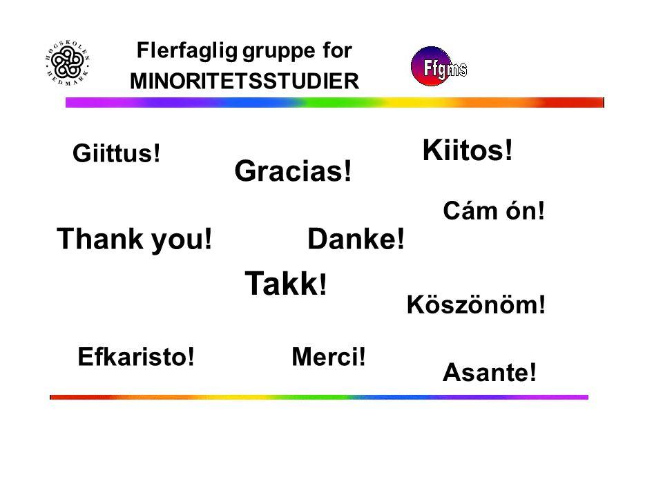Flerfaglig gruppe for MINORITETSSTUDIER Takk ! Thank you! Gracias! Danke! Kiitos! Merci! Köszönöm! Efkaristo! Cám ón! Asante! Giittus!