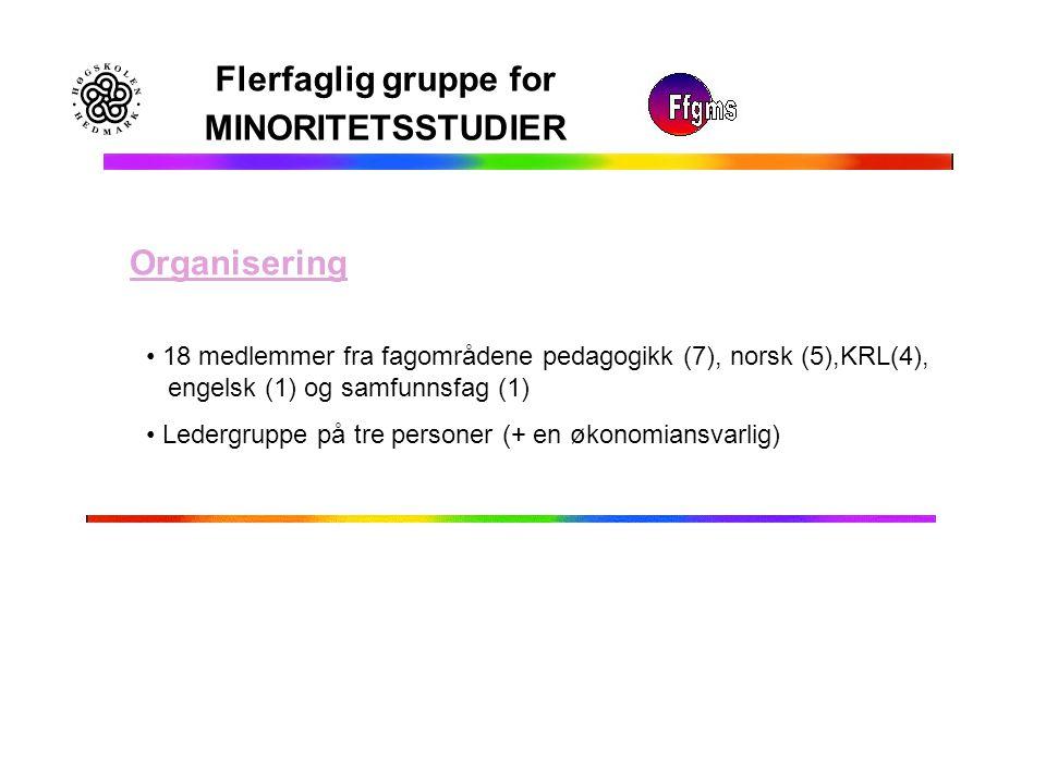 Flerfaglig gruppe for MINORITETSSTUDIER Organisering 18 medlemmer fra fagområdene pedagogikk (7), norsk (5),KRL(4), engelsk (1) og samfunnsfag (1) Led