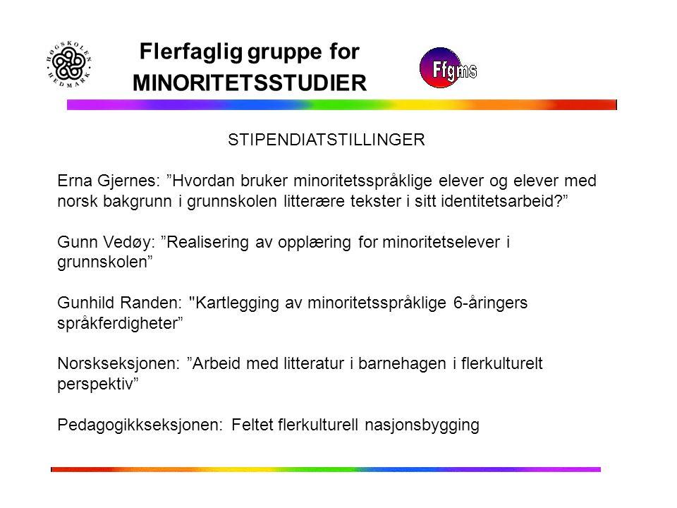 """Flerfaglig gruppe for MINORITETSSTUDIER Erna Gjernes: """"Hvordan bruker minoritetsspråklige elever og elever med norsk bakgrunn i grunnskolen litterære"""