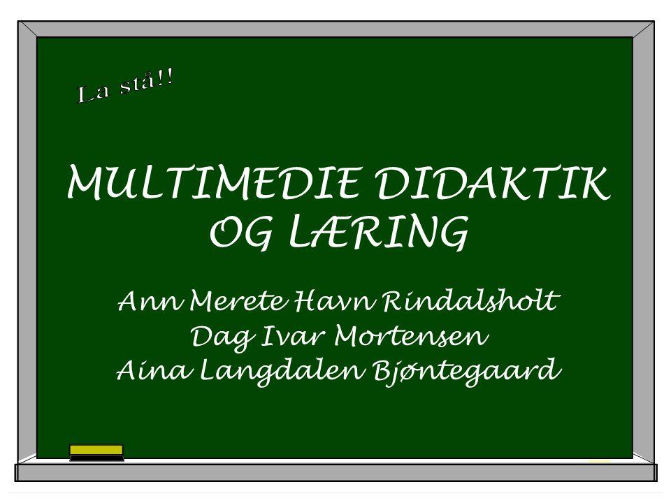MULTIMEDIE DIDAKTIK OG LÆRING Ann Merete Havn Rindalsholt Dag Ivar Mortensen Aina Langdalen Bjøntegaard