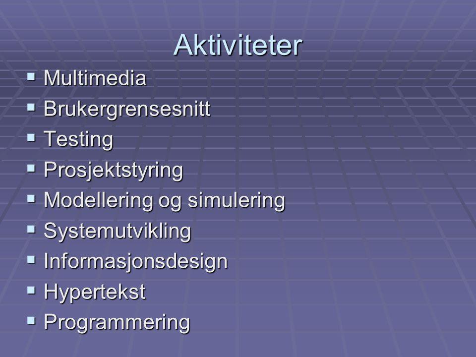 Aktiviteter  Multimedia  Brukergrensesnitt  Testing  Prosjektstyring  Modellering og simulering  Systemutvikling  Informasjonsdesign  Hypertekst  Programmering