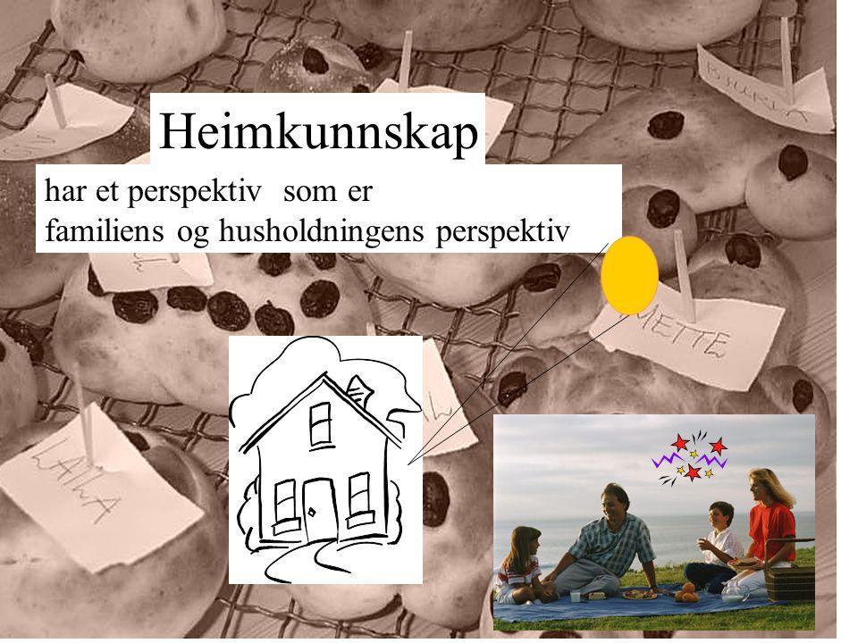 grunnskoler i Hedmark / Oppland kommuner, fylke, staten næringslivet, lokalt og nasjonalt ulike kompetanse sentra ulike organisasjoner andre høgskoler