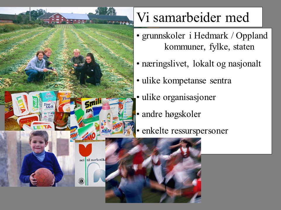 grunnskoler i Hedmark / Oppland kommuner, fylke, staten næringslivet, lokalt og nasjonalt ulike kompetanse sentra ulike organisasjoner andre høgskoler enkelte ressurspersoner Vi samarbeider med