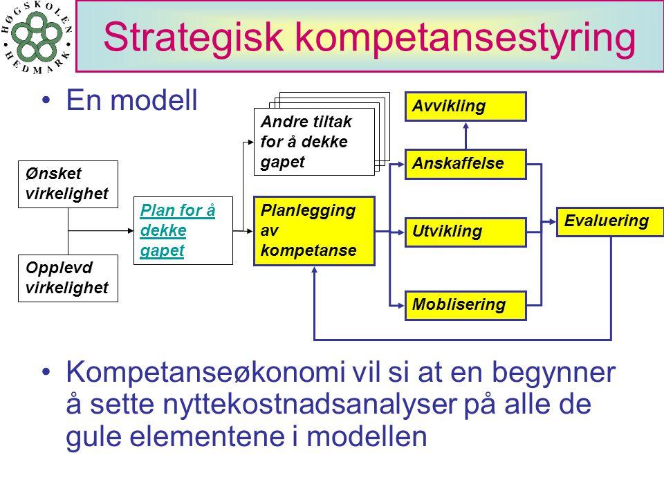 Strategisk kompetansestyring En modell Ønsket virkelighet Opplevd virkelighet Utvikling Moblisering Evaluering Avvikling Anskaffelse Plan for å dekke