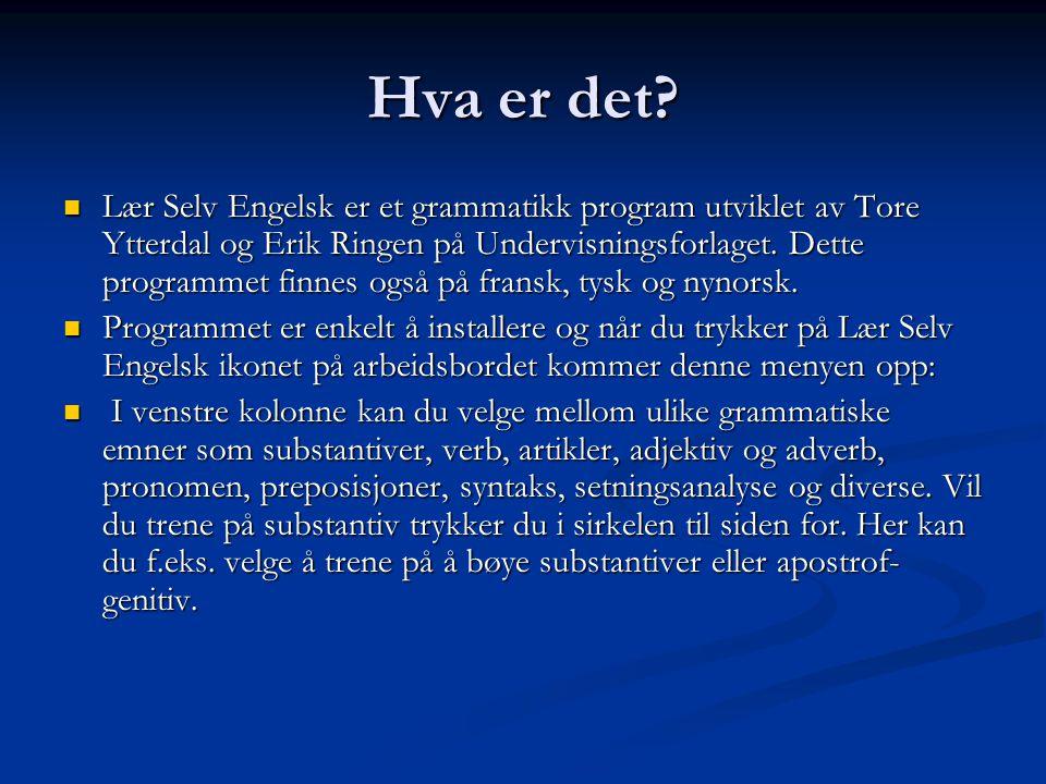 Hva er det? Lær Selv Engelsk er et grammatikk program utviklet av Tore Ytterdal og Erik Ringen på Undervisningsforlaget. Dette programmet finnes også