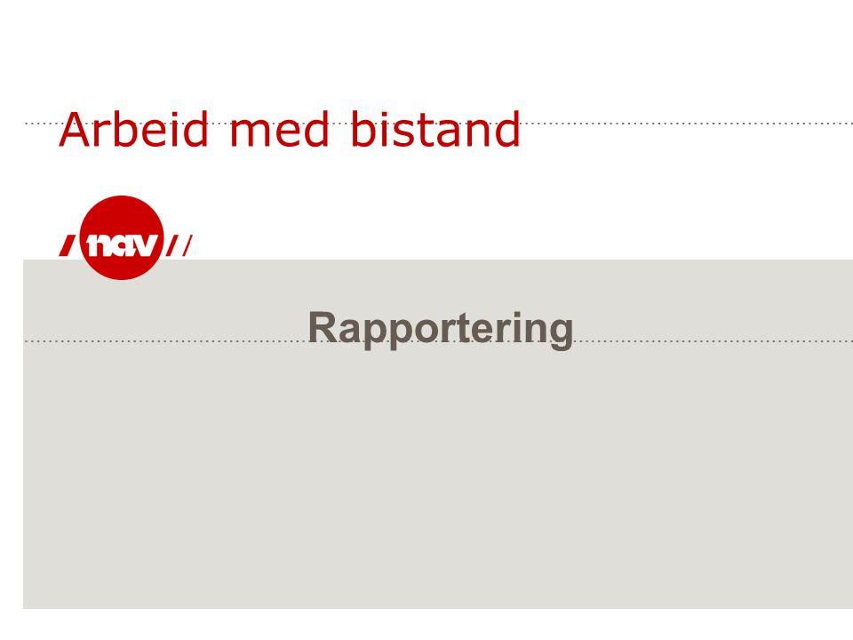 Rapportering Arbeid med bistand