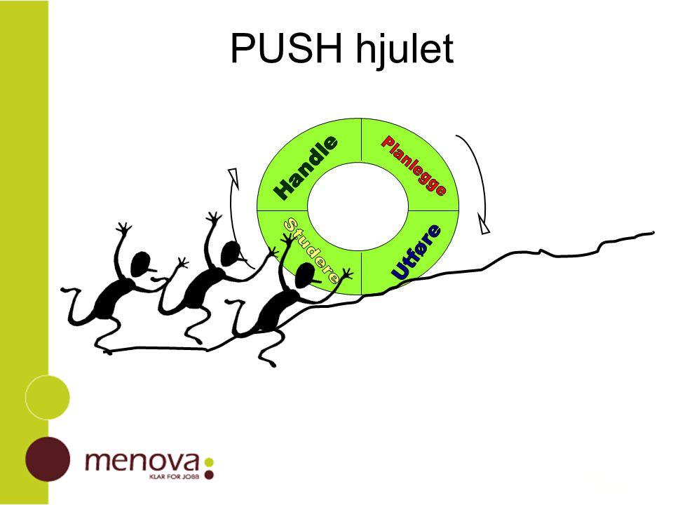PUSH hjulet
