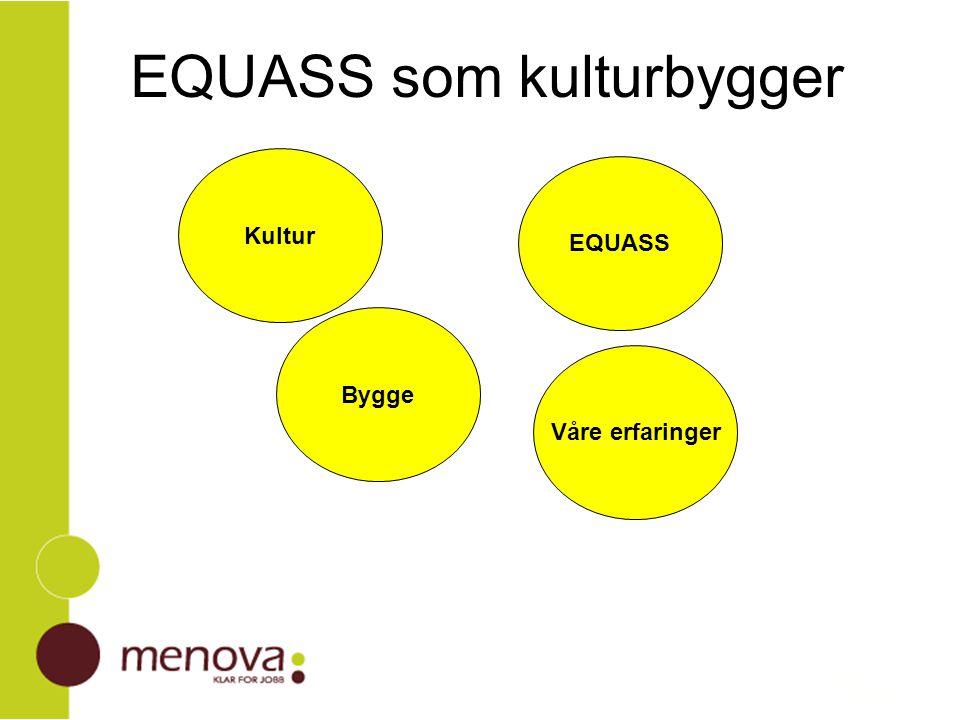 Motivere for EQUASS Verktøy for intern utvikling Vi må mestre oss selv på det nivå vi vil være utad Equass er et læringsverktøy som muliggjør egen læring Hva gjør EQUASS prosessen for hver enkelt medarbeider ro / trygghet tar vare på det som er godt lik arverett fra to kulturer medvirkning betyr innflytelse og forpliktelse