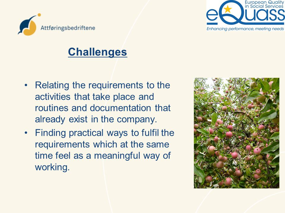 Challenges Relating the requirements to the activities that take place and routines and documentation that already exist in the company.