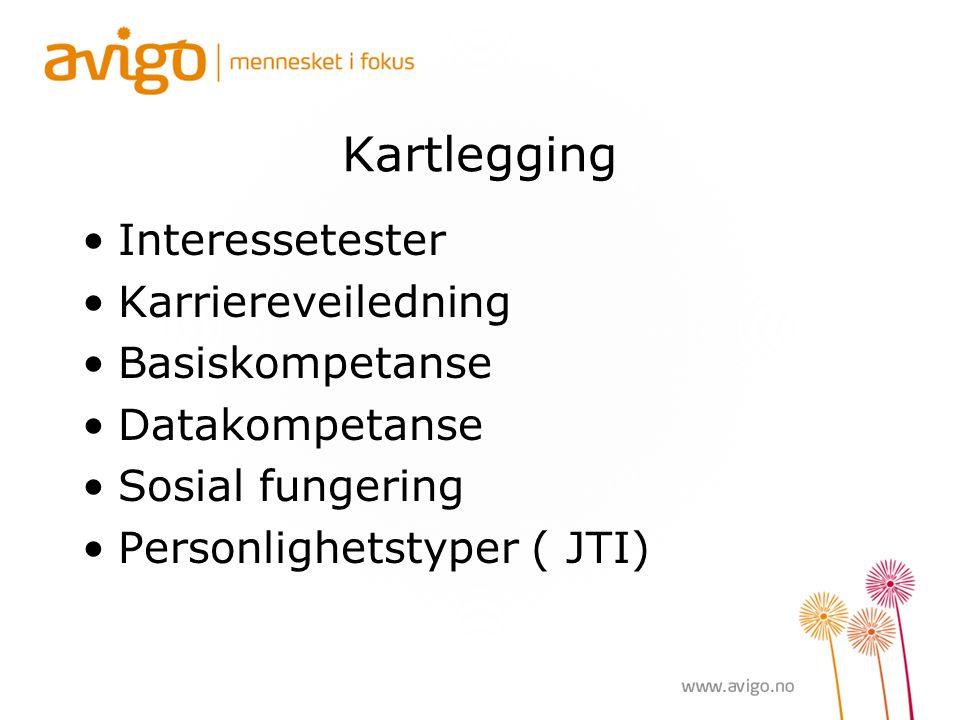 Kartlegging Interessetester Karriereveiledning Basiskompetanse Datakompetanse Sosial fungering Personlighetstyper ( JTI)