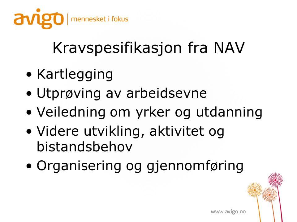 Kravspesifikasjon fra NAV Kartlegging Utprøving av arbeidsevne Veiledning om yrker og utdanning Videre utvikling, aktivitet og bistandsbehov Organisering og gjennomføring