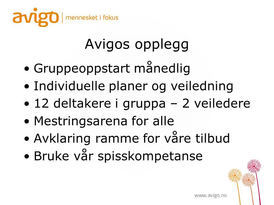 Avigos opplegg Gruppeoppstart månedlig Individuelle planer og veiledning 12 deltakere i gruppa – 2 veiledere Mestringsarena for alle Avklaring ramme for våre tilbud Bruke vår spisskompetanse
