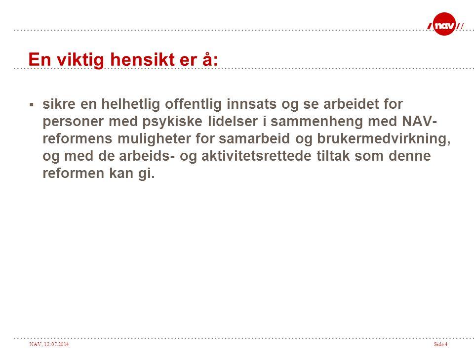 NAV, 12.07.2014Side 15  Kurspakke om psykiske lidelser i arbeidslivet.