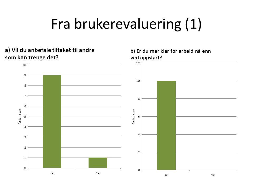 Fra brukerevaluering (1) a) Vil du anbefale tiltaket til andre som kan trenge det? b) Er du mer klar for arbeid nå enn ved oppstart?