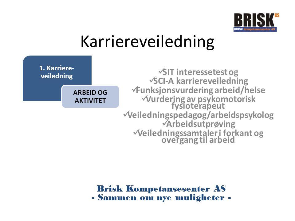 1. Karriere- veiledning ARBEID OG AKTIVITET Karriereveiledning SIT interessetest og SCI-A karriereveiledning Funksjonsvurdering arbeid/helse Vurdering
