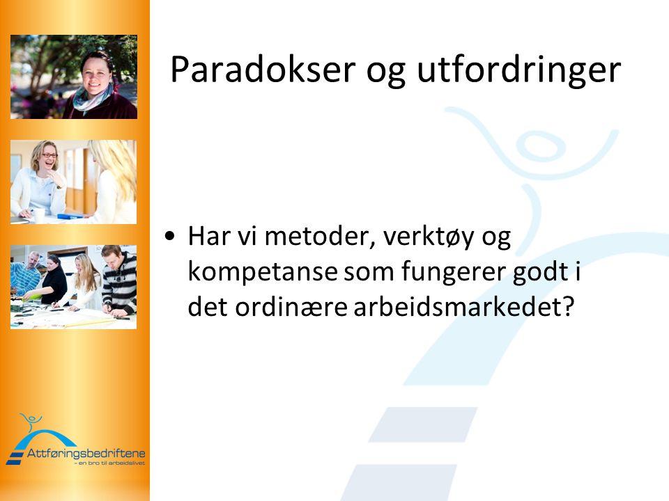 Paradokser og utfordringer Har vi metoder, verktøy og kompetanse som fungerer godt i det ordinære arbeidsmarkedet