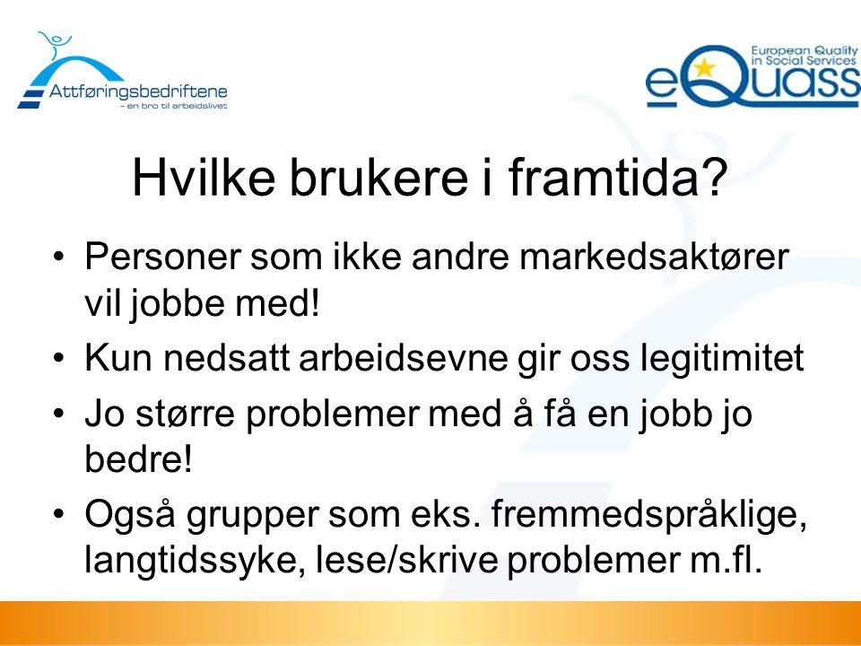 Mål for videre arbeid: Vi skal framstå som foretrukne leverandør av arbeidskraft .