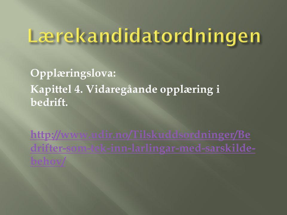 Elev Hapro OT KIF Barne- vern Nav Ungdoms team OHIH Arbeids giver Foreldre Nettverk PPT BUP DPS