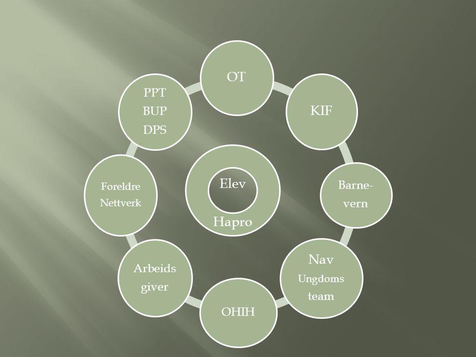 Eks 1: Elevens hovedvanske er generelle lærevansker, verbal del og spesifikke lese- og skrivevansker.
