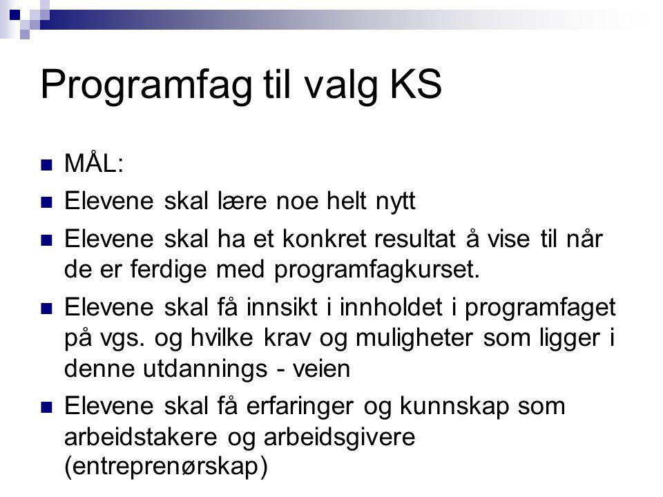 Programfag til valg KS MÅL: Elevene skal lære noe helt nytt Elevene skal ha et konkret resultat å vise til når de er ferdige med programfagkurset.