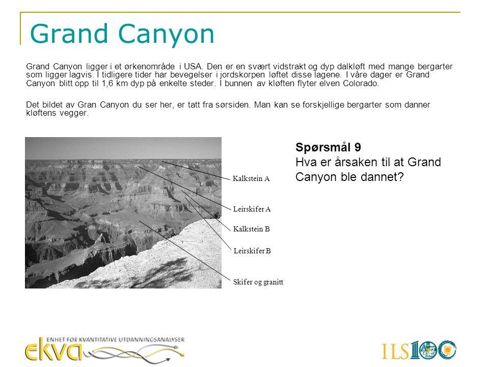 Grand Canyon Grand Canyon ligger i et ørkenområde i USA. Den er en svært vidstrakt og dyp dalkløft med mange bergarter som ligger lagvis. I tidligere