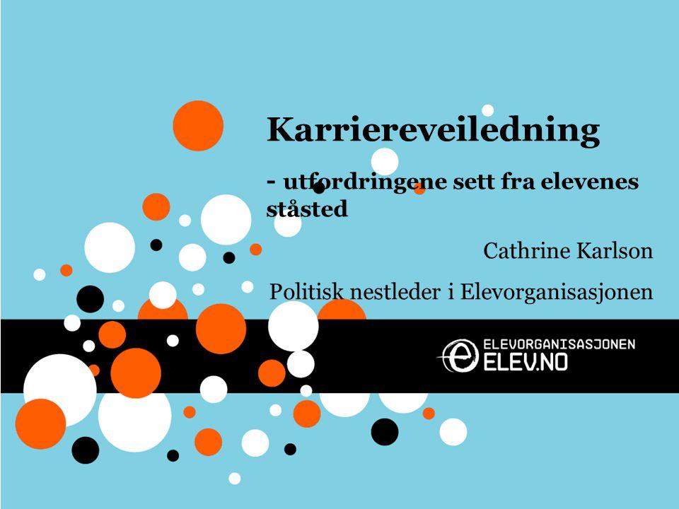 Karriereveiledning - utfordringene sett fra elevenes ståsted Cathrine Karlson Politisk nestleder i Elevorganisasjonen