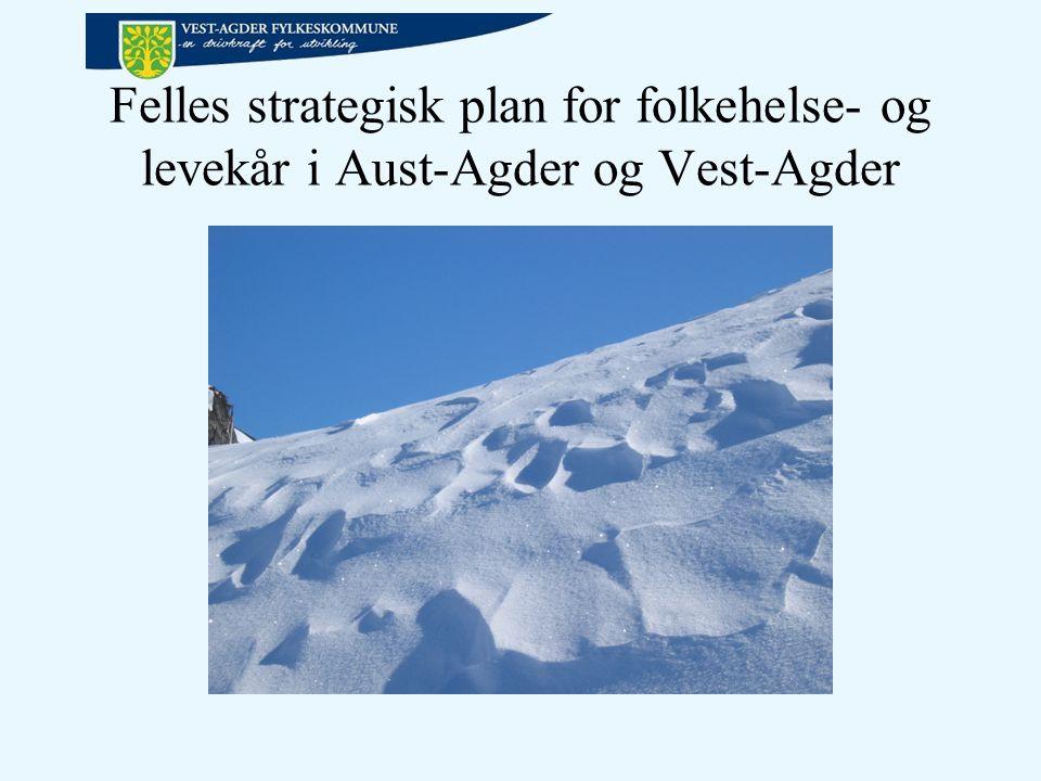Felles strategisk plan for folkehelse- og levekår i Aust-Agder og Vest-Agder