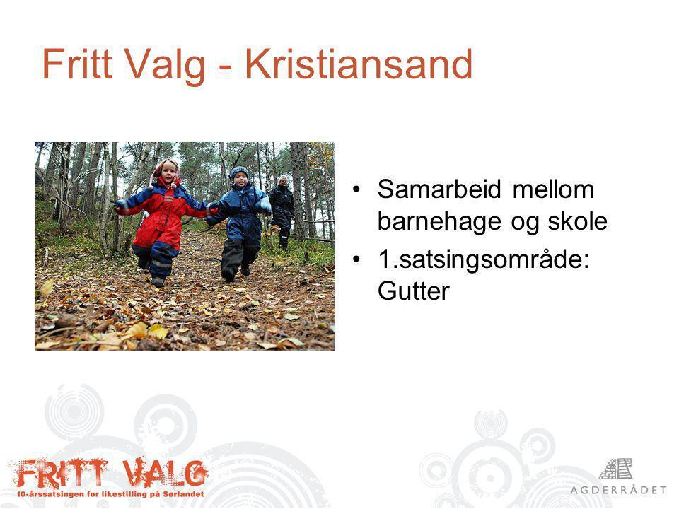 Fritt Valg - Kristiansand Samarbeid mellom barnehage og skole 1.satsingsområde: Gutter