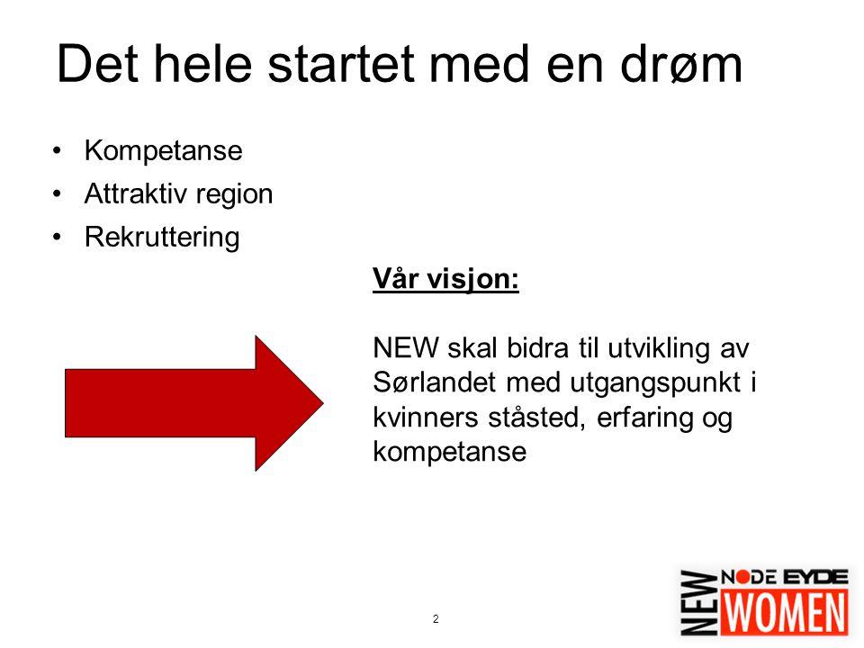 2 Det hele startet med en drøm Kompetanse Attraktiv region Rekruttering Vår visjon: NEW skal bidra til utvikling av Sørlandet med utgangspunkt i kvinners ståsted, erfaring og kompetanse