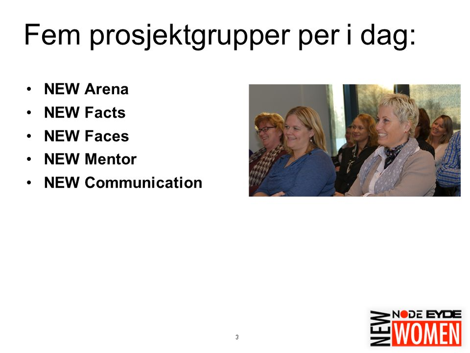 3 Fem prosjektgrupper per i dag: NEW Arena NEW Facts NEW Faces NEW Mentor NEW Communication