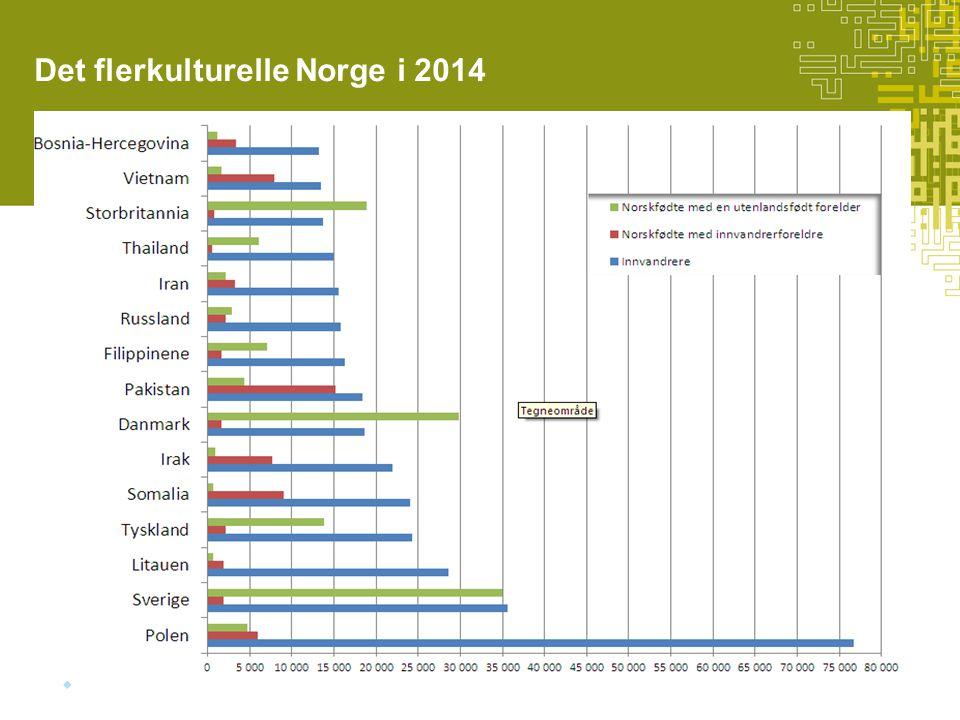 Det flerkulturelle Norge i 2014