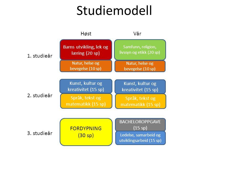 Studiemodell Barns utvikling, lek og læring (20 sp) Samfunn, religion, livssyn og etikk (20 sp) Natur, helse og bevegelse (10 sp) Kunst, kultur og kre