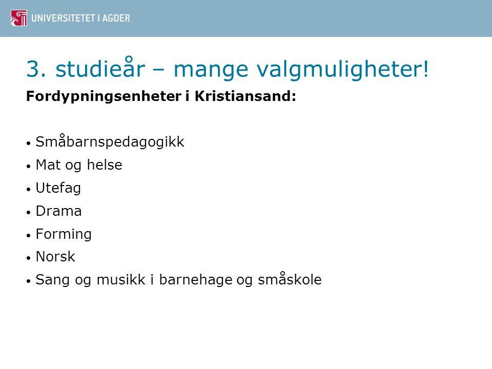 9 3. studieår – mange valgmuligheter! Fordypningsenheter i Grimstad: Forming Småbarnspedagogikk