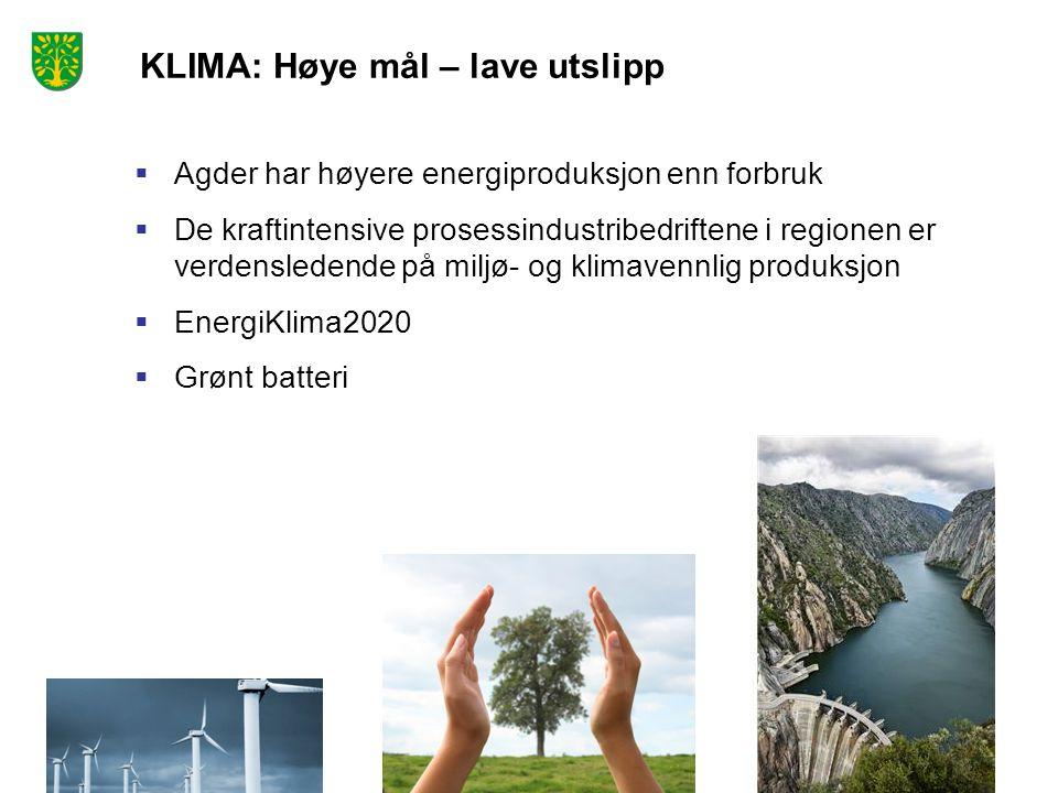KLIMA: Høye mål – lave utslipp  Agder har høyere energiproduksjon enn forbruk  De kraftintensive prosessindustribedriftene i regionen er verdensledende på miljø- og klimavennlig produksjon  EnergiKlima2020  Grønt batteri