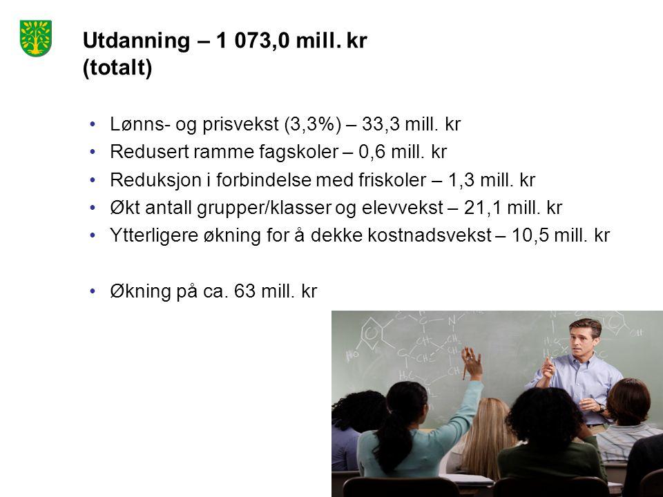 Utdanning – 1 073,0 mill. kr (totalt) Lønns- og prisvekst (3,3%) – 33,3 mill. kr Redusert ramme fagskoler – 0,6 mill. kr Reduksjon i forbindelse med f