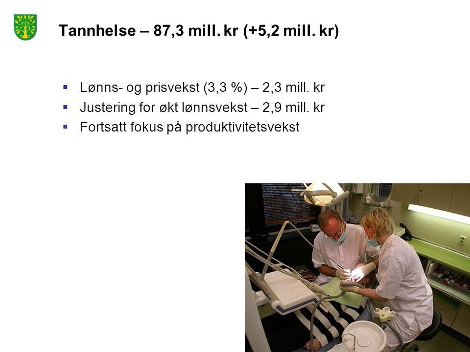 Tannhelse – 87,3 mill. kr (+5,2 mill. kr)  Lønns- og prisvekst (3,3 %) – 2,3 mill. kr  Justering for økt lønnsvekst – 2,9 mill. kr  Fortsatt fokus