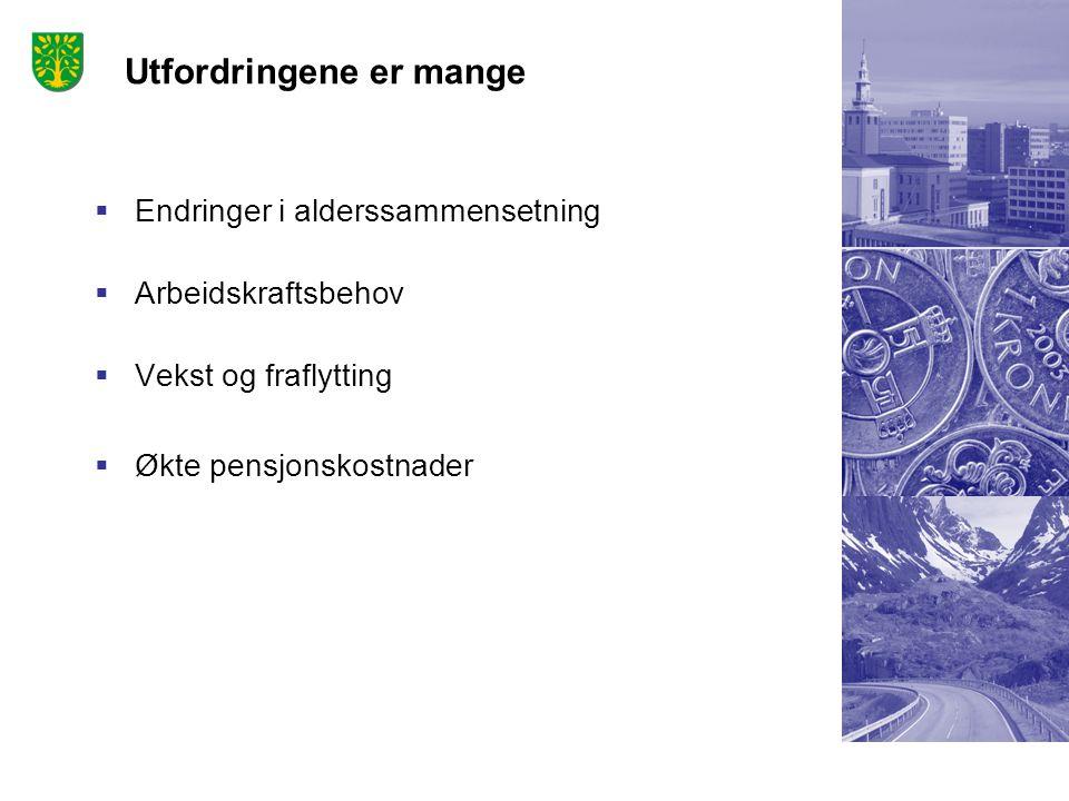 Norsk mal: Tekst med kulepunkter – 3 vertikale bilder Tips bilde: For best oppløsning anbefales jpg og png- format. Utfordringene er mange  Endringer