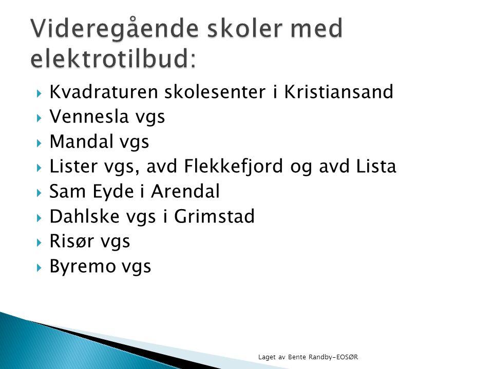  Kvadraturen skolesenter i Kristiansand  Vennesla vgs  Mandal vgs  Lister vgs, avd Flekkefjord og avd Lista  Sam Eyde i Arendal  Dahlske vgs i G