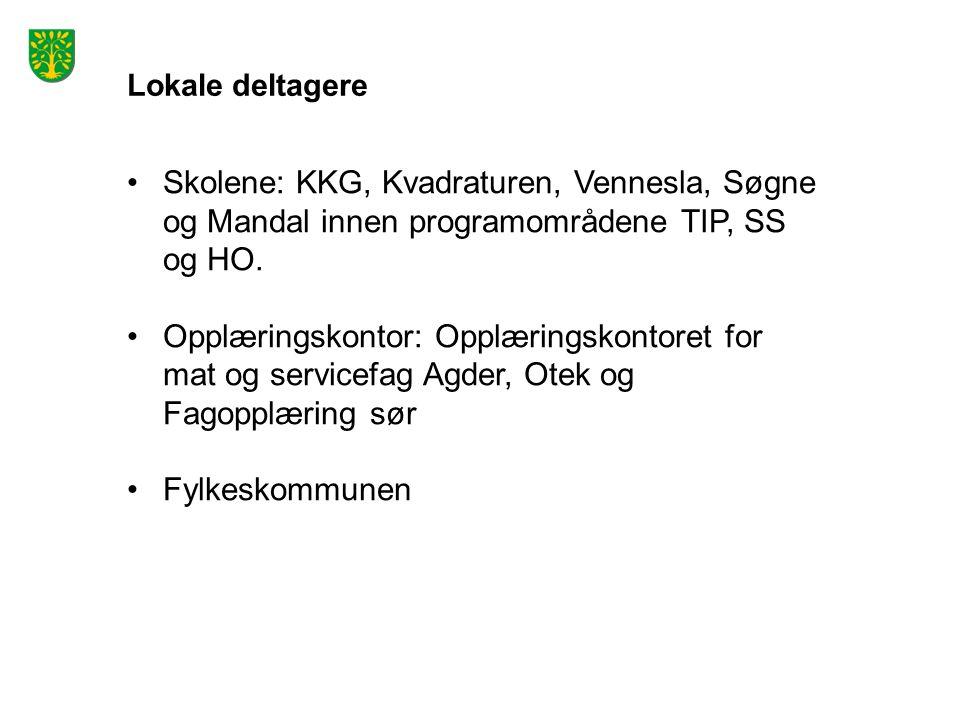 Lokale deltagere Skolene: KKG, Kvadraturen, Vennesla, Søgne og Mandal innen programområdene TIP, SS og HO.