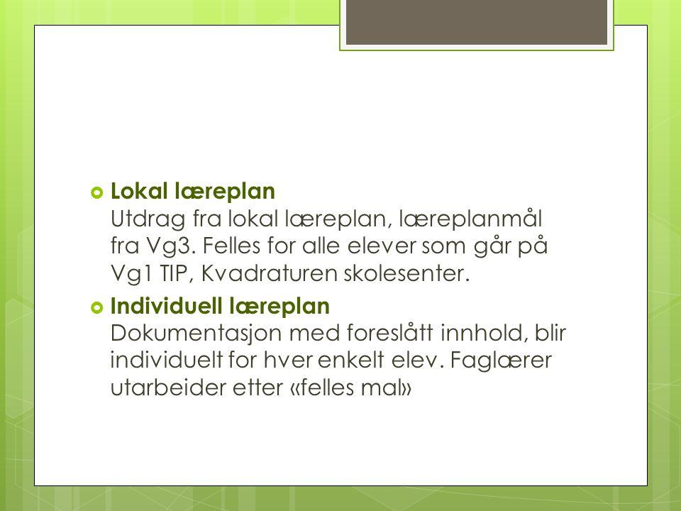  Lokal læreplan Utdrag fra lokal læreplan, læreplanmål fra Vg3.