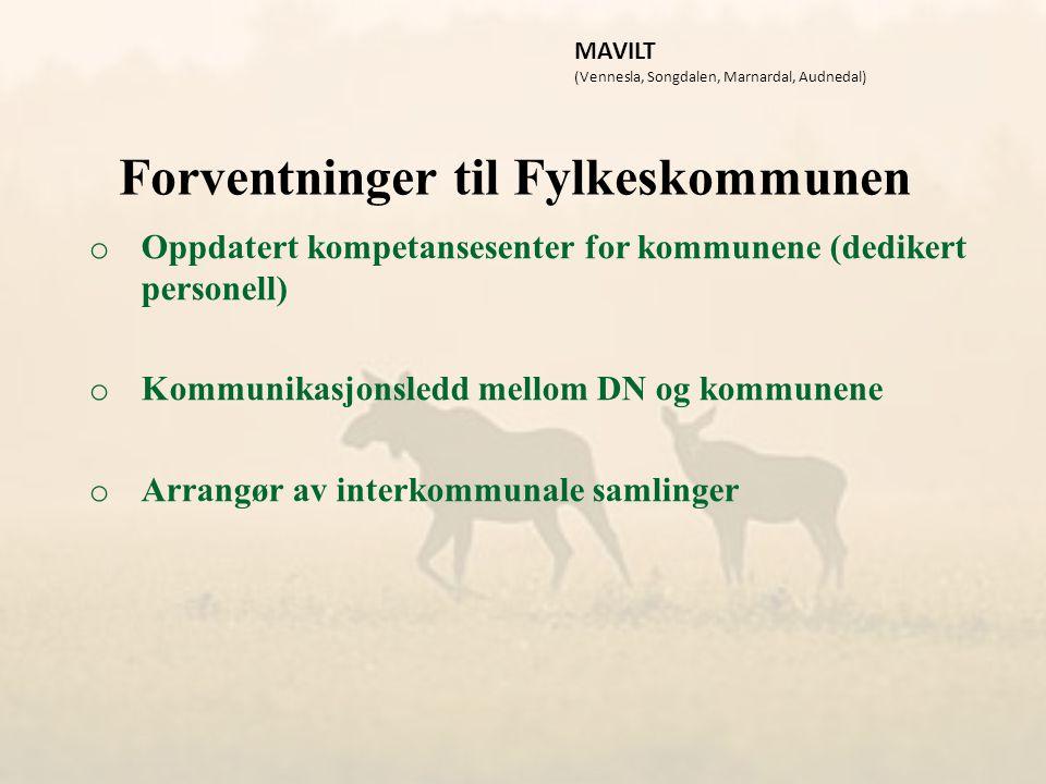 Forventninger til Fylkeskommunen o Oppdatert kompetansesenter for kommunene (dedikert personell) o Kommunikasjonsledd mellom DN og kommunene o Arrangør av interkommunale samlinger MAVILT (Vennesla, Songdalen, Marnardal, Audnedal)