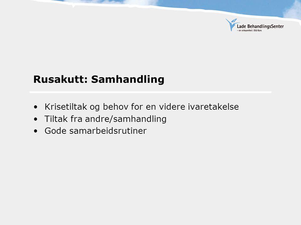 Rusakutt: Samhandling Krisetiltak og behov for en videre ivaretakelse Tiltak fra andre/samhandling Gode samarbeidsrutiner