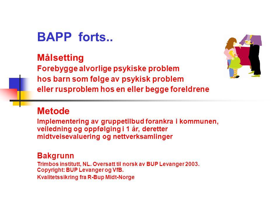BAPP forts.. Målsetting Forebygge alvorlige psykiske problem hos barn som følge av psykisk problem eller rusproblem hos en eller begge foreldrene Meto
